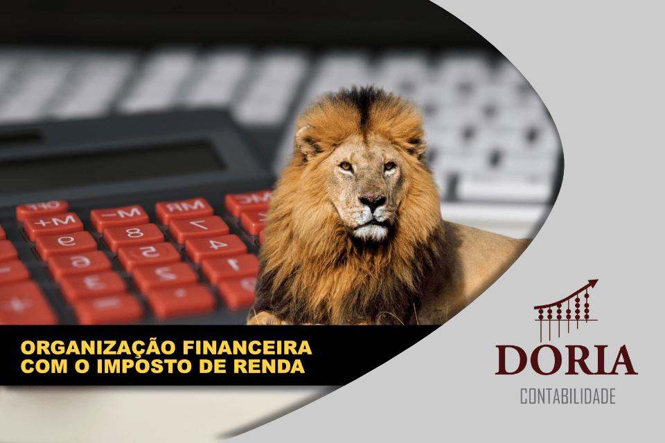 Organização Financeira com o Imposto de Renda: é possível?
